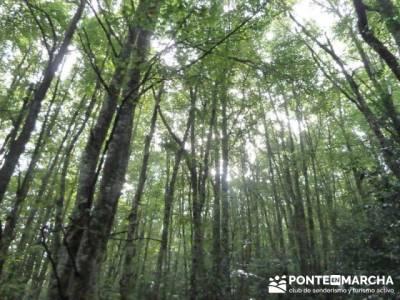 Cañones y nacimento del Ebro - Monte Hijedo;rutas por sierra de madrid;rutas sierra norte madrid